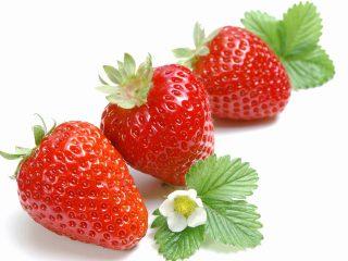 hương liệu dùng trong thực phẩm